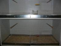 Fabrication d'une cage en plastique . Fin_small